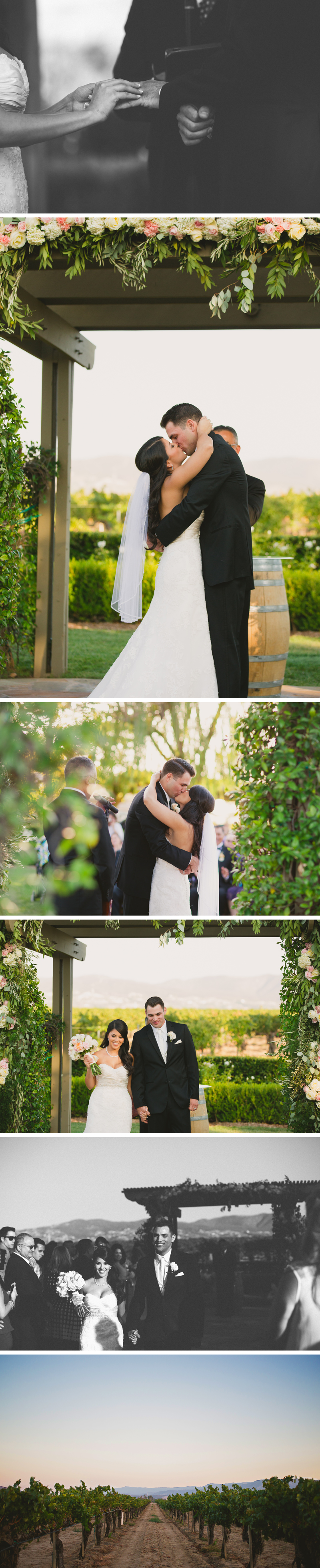 ponte-wedding-photos10